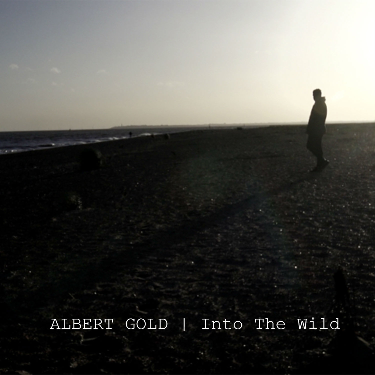 Into The Wild - Albert Gold